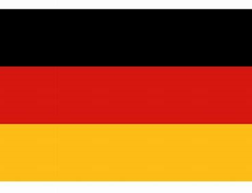 Germany, Commission on Hospital Hygiene and Infection Prevention at the Robert Koch Institute and the Federal Institute for Drugs and Medical Devices (BfArM), Hygiene Requirements for the Reprocessing of Medical Devices (2012)
